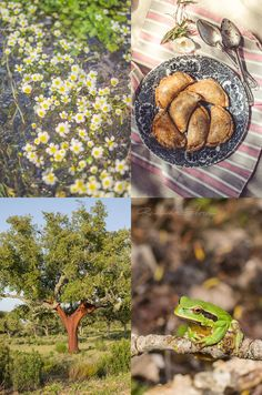 Revelando Sabores: {MENÚ PICNIC I} Empanadillas de bonito y berenjena