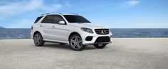 There 39 s always a bigger adventure out there colley ford for Mercedes benz euro motorcars germantown