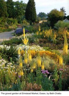 Gravel Garden / Beth Chatto / on TTL Design