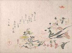 Kubo Shunman (Japanese, 1757–1820) (?). Rose, Iris, Primrose and Daisy, 1815. Edo period (1615–1868). Japan. The Metropolitan Museum of Art, New York. H. O. Havemeyer Collection, Bequest of Mrs. H. O. Havemeyer, 1929 (JP2214) #iris #flower