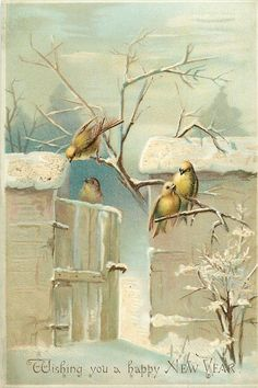 Mary Rowles Jarvis: Four Yellow Birds at Snowy Gate and Wall. Vintage Greeting Cards, Vintage Christmas Cards, Vintage Ephemera, Vintage Holiday, Vintage Happy New Year, Happy New Year Cards, Picture Postcards, Vintage Postcards, Vintage Birds