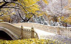 Winter Central Park, New York, USA