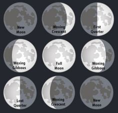 Phases of the moon. Carter just learned this is second grade. I can honestly say I never learned this!