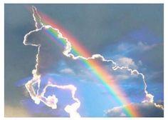 Unicorn does exists ❤
