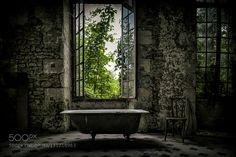 Abandoned Bathtub by Art-of-Thomas #fadighanemmd
