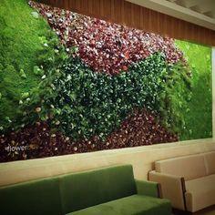 Zielona ściana, połączenie roślin stabilizowanych i mchu leśnego.