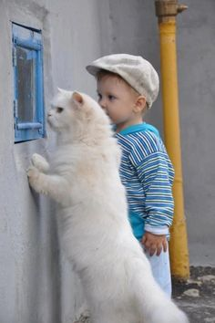 A boy and a white cat