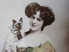 猫と彩色美人