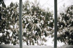 Current window view. #winterstormjonas by beccamathiasphoto