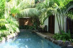 Beautiful Tropical Pool Design with Amazing Small Tiles Pool Flooring Design also Fresh Green Pool Plants Decorating Ideas and Simple Wooden Pool Bench Furniture Decorating for Outdoor Pool Design Ideas