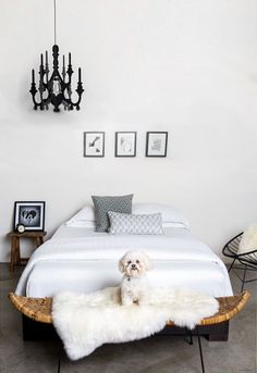 Throwing this sheepskin rug over my bed makes it a cozy place to read a book with my puppy.