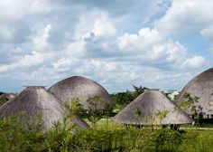 Vo Trong Nghia creates bamboo and thatch domes in Vietnam.