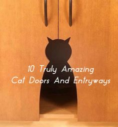 Need a great cat door, but want something better than the standard flap? Here are 10 amazing and unique cat doors that you can buy or make yourself as a DIY cat door project. Crazy Cat Lady, Crazy Cats, I Love Cats, Cool Cats, Unique Cats, Here Kitty Kitty, Cat Furniture, Diy Door, Cat Toys