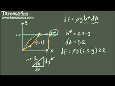 Presión y fuerza ejercida por un fluido ejemplo 5