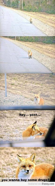 Hey... Psst... You Wanna Buy Some Drugs?