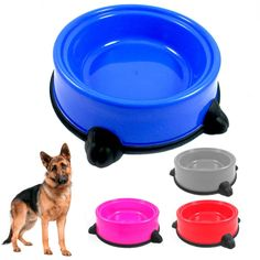Dishes, Feeders & Fountains Pet Feeder Automatic Petmate Meal Portion Food Storage Easy Feeding Dish 6 Lbs Bright Luster