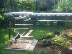 cat enclosure with walkway and awning