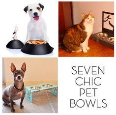 Roundup: 7 Pet Bowls Super-chique »Curbly   DIY Design Community