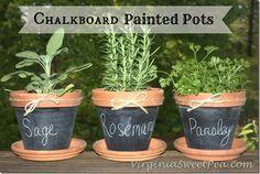 Chalkboard Paint Pots by virginiasweetpea.com