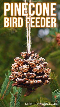 winter crafts for tweens ! winterhandwerk für tweens winter crafts for tweens ! For Students winter crafts. Bird Seed Crafts, Bird Seed Ornaments, Seed Crafts For Kids, Pine Cone Crafts For Kids, Pinecone Crafts Kids, Thanksgiving Crafts For Kids, Crafts For Seniors, Adult Crafts, Pine Cone Bird Feeder