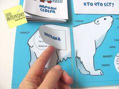 """Лэпбук """"Арктика и Северный полюс"""". Шаблоны для распечатки :: Это интересно!"""