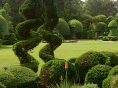 From documentary on Pearl Fryar -- A Man Called Pearl -- he works over 70 hrs a week on his topiary gardens in SC