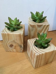 39 Captivating Wood Succulent Planter Ideas Of Unused Wood Succulents are perfect plants for dry gardens and are easy to root and grow. Once you learn how easy it […] Wooden Planters, Diy Planters, Planter Boxes, Planter Ideas, Succulent Planter Diy, Succulents Diy, Planting Succulents, Dry Garden, Plant Cuttings