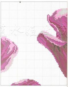 tulipany 2