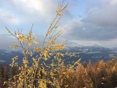 Pila-Valle d'Aosta
