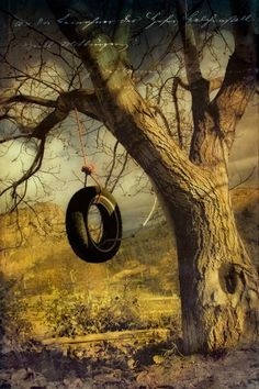 Just Plain COUNTRY CHARM... Old tire swing. What fun they are!