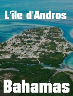 L'île d'Andros aux Bahamas Nassau, Andros, Les Bahamas, Water, Outdoor, Florida, Gripe Water, Outdoors, Outdoor Living