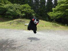 Kumamon achieved high score