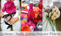 South African Summer Wedding Flowers - Choosing local flowers for a SA Wedding | Yes Baby Daily