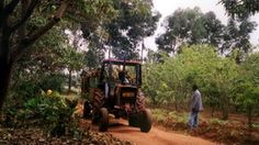 (Picture of tractor on farm in Tanzania) Read in BBC with a report on: Africa's economic growth is being held back by confusion over who owns vast swathes of agricultural land, according to a World Bank report.