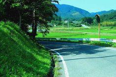 Japan Landscape, Landscape Photos, Landscape Art, Japanese Countryside, Green Scenery, Japanese Photography, Aesthetic Japan, Guache, Natural Scenery