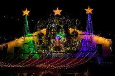 Christmas Lights Holiday show