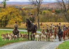 Piedmont Fox Hounds by Middleburg Photo