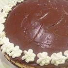 Chocolate Frosted Marble Cheesecake
