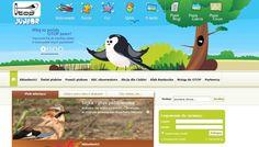 dla młodych ornitologów