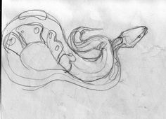 A sketch of a snake