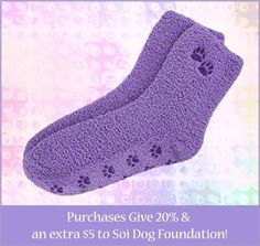Want to buy some great gifts and help the dogs and cats of Thailand at the same time? Soi Dog Foundation has partnered with GREATER GOOD, so you can purchase items from them that do just that.  For a limited time, for every one of these Purple Paw slipper socks sold, Greater Good will donate USD $5 to Soi Dog. Furthermore, if you purchase by following this link, Greater Good will donate 20% of what you spend, in addition to the USD $5: http://shop2give.us/1DyBtTC