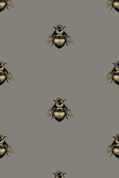 Napoleon Bee wallpaper by Timorous Beasties Vinyl Wallpaper, Cloakroom Wallpaper, Wallpaper Toilet, Quirky Wallpaper, Hallway Wallpaper, Print Wallpaper, Kitchen Wallpaper, Wallpaper Backgrounds, Cottage Wallpaper