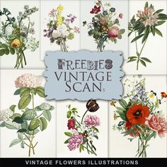 http://farfarhill.blogspot.com/2012/03/freebies-vintage-flowers-illustrations.html