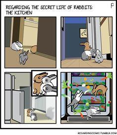 This would happen if my buns could open the fridge door