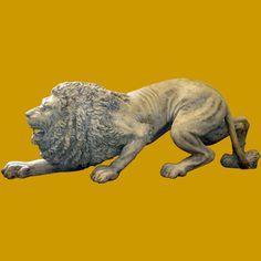 lion crouching - Google Search