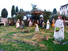 crib @ Assisi #Umbria #Assisi #Christmas Assicity