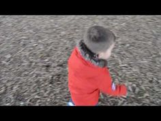 Playing catch with the birds - YouTube