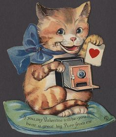 Cat with a Camera - Mechanical Valentine