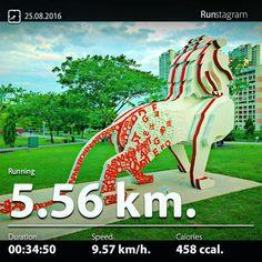Benchmark Run  Recent activity! - 5.56 km Running #health #sport #runstagram  #runstagrammer  #run #running #runkeeper #runnerscommunity #runforabettertomorrow #sgrunners #instarunner  #worlderunners #run #nikerun #nikeplus #loverunning  #justrunlah #ThisIsUs #benchmarkrun #benchmark