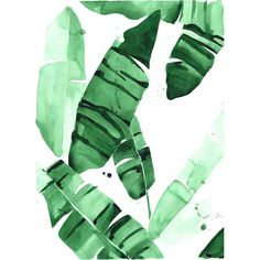 """This amazing banana leaf watercolor print will make the perfect addition to your wall! A iclee print of the artists original watercolor painting. Size: 20"""" X 3"""